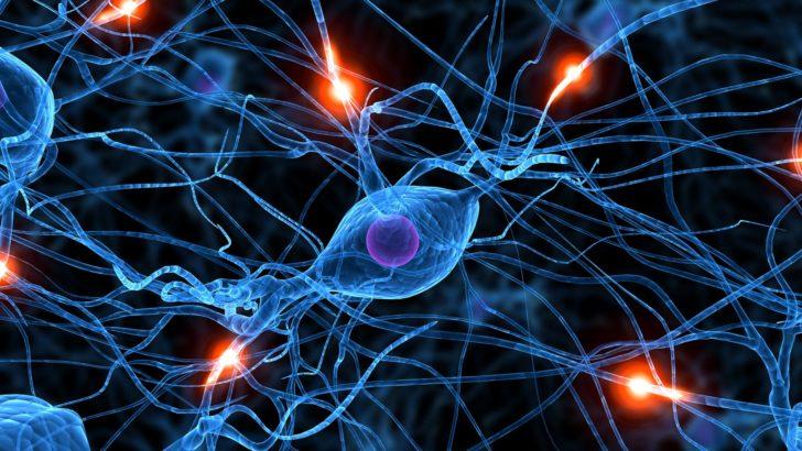 Nuestros mecanismos de defensa: las reservas cognitivas