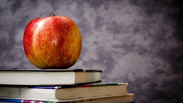 La pedagogía de la exigencia