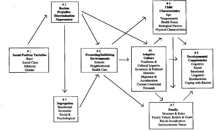 Figura 1- El modelo integrador para el estudio de las competencias del desarrollo en niños minoritarios. García Coll et al. (1996, p. 1896).